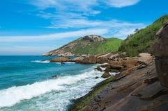 Praia brasileira tropical Imagem de Stock