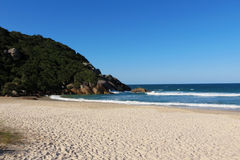 Praia Brava - Florianópolis, Santa Catarina - Brasil. Beautiful and paradisiacal beach resort on the enchanting island of Florianópolis, the state capital of Stock Photos
