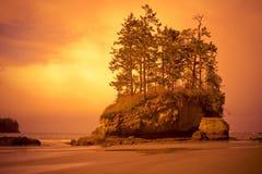 Praia com árvores Fotografia de Stock Royalty Free