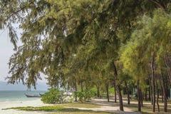 A praia com árvores tropicais Imagem de Stock