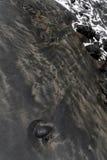 Praia com a areia preta em Karekare Fotografia de Stock