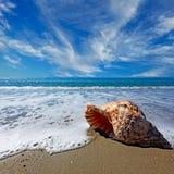 Praia com escudo Imagem de Stock