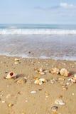 Praia com escudos Fotos de Stock