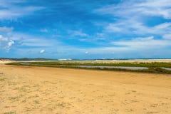 Praia com lago e juncos Foto de Stock Royalty Free