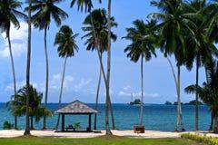 Praia com palmeiras Fotos de Stock