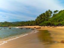Praia com palmeiras Imagem de Stock