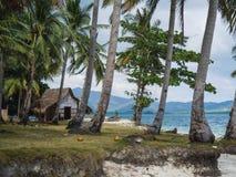 Praia com palmeiras e a areia branca imagem de stock