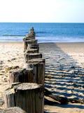Praia com pólos de madeira Foto de Stock Royalty Free