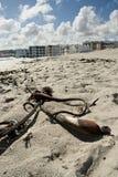 Praia com recurso e nuvens no fundo Fotografia de Stock