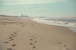 Praia com skyline Imagens de Stock Royalty Free