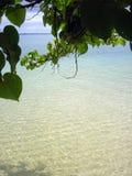 Praia como novo de Tonga Fotografia de Stock Royalty Free