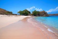 Praia cor-de-rosa fotos de stock