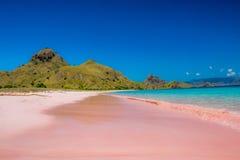 Praia cor-de-rosa Imagens de Stock