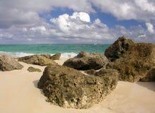 Praia coral fotografia de stock