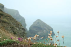 Praia Cornish Imagem de Stock Royalty Free