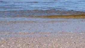 Praia da areia com ondas pequenas Seascape bonito vídeos de arquivo