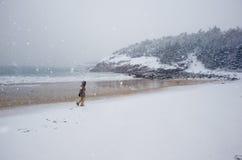 Praia da areia durante uma tempestade da neve Foto de Stock Royalty Free