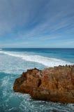 Praia da barba de baleia Imagens de Stock