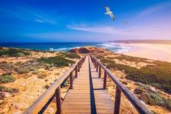 Praia da Bordeira i boardwalks tworzy część ślad przypływy lub Pontal da Carrapateira spacer w Portugalia Lataj?cy Seagulls zdjęcia royalty free