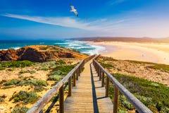 Praia da Bordeira i boardwalks tworzy część ślad przypływy lub Pontal da Carrapateira spacer w Portugalia Lataj?cy Seagulls obraz royalty free