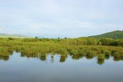 Praia da calma do lago summer com fotografia de stock