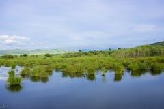 Praia da calma do lago summer com imagens de stock royalty free