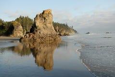 Praia da costa olímpica, Washington, EUA Imagens de Stock Royalty Free