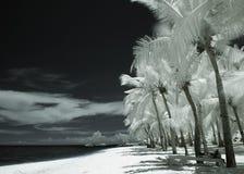 Praia da fantasia Imagem de Stock Royalty Free