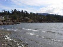 Praia da ilha das orcas Foto de Stock