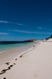 Praia da ilha de Rottnest Imagem de Stock Royalty Free