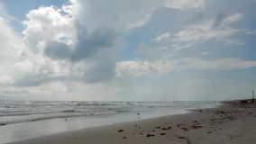 Praia da ilha do capelão, Texas video estoque
