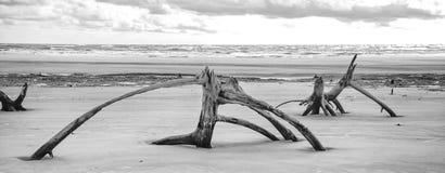 Praia da ilha do mar Imagens de Stock Royalty Free