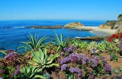 Praia da ilha do tesouro abaixo do recurso da montagem. Foto de Stock