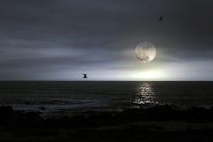 Praia da Lua cheia Imagem de Stock Royalty Free