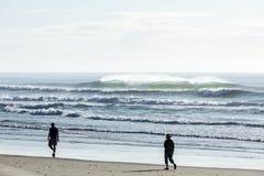 Praia da ressaca Imagem de Stock