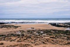 Praia da ressaca de Torquay Imagens de Stock Royalty Free