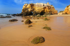 Praia da Rocha Beach, Portugal Royalty Free Stock Images