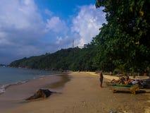 Praia da selva Imagem de Stock