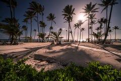 Praia das caraíbas Fotos de Stock