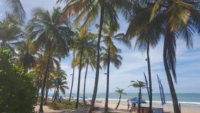 Praia das caraíbas Fotos de Stock Royalty Free