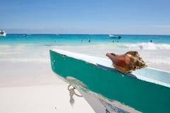 Praia das caraíbas México de Tulum Fotos de Stock