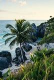 Praia das caraíbas México de Tulum Imagens de Stock Royalty Free