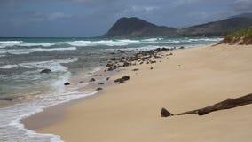 Praia das trilhas, Oahu vídeos de arquivo