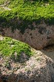 Praia de Algarrobo Imagem de Stock Royalty Free
