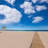 Praia de Alicante San Juan com árvores de palmas imagem de stock