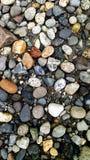 Praia de Anacortes Imagens de Stock