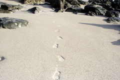 Praia X de Andaman Foto de Stock Royalty Free