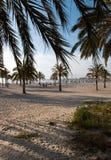 Praia de Arenal em Mallorca fotos de stock royalty free