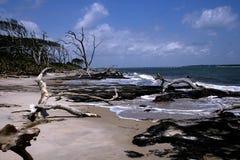 Praia de Blackrock Imagens de Stock