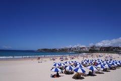 Praia de Bondi Fotografia de Stock